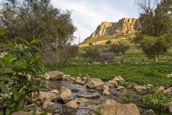 מה קרה השנה – מקומות חדשים בישראל