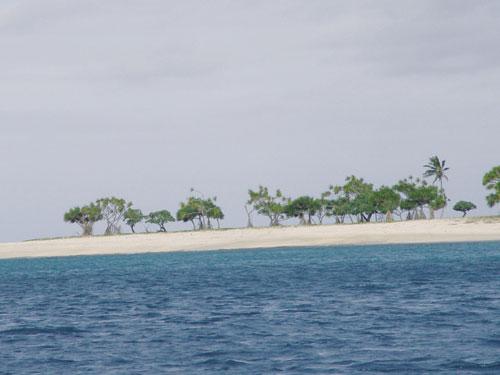 טונגה: האיש שיצא לחפש את גן העדן