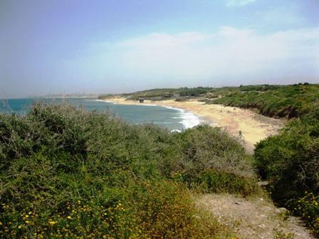 חוף פלמחים עובר לניהול רשות הטבע והגנים