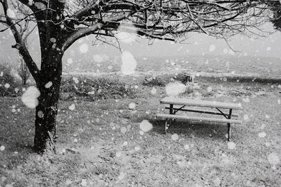 החורף חוזר למזרח ארצות הברית
