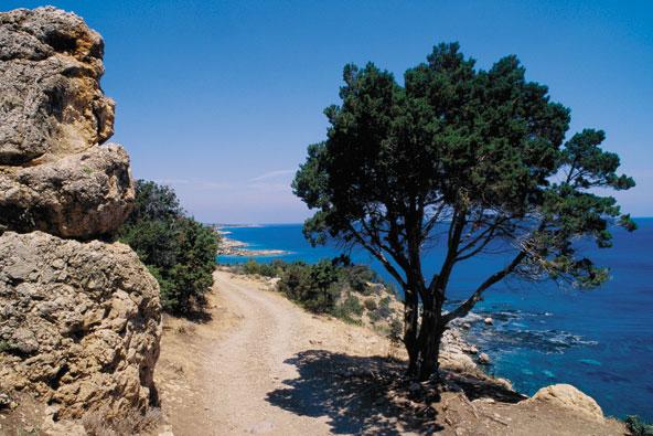 קפריסין: טיול לאורך החוף המערבי
