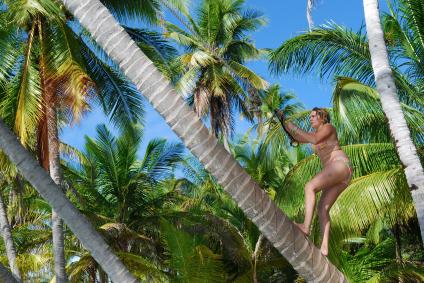 הישרדות באיי הפנינה