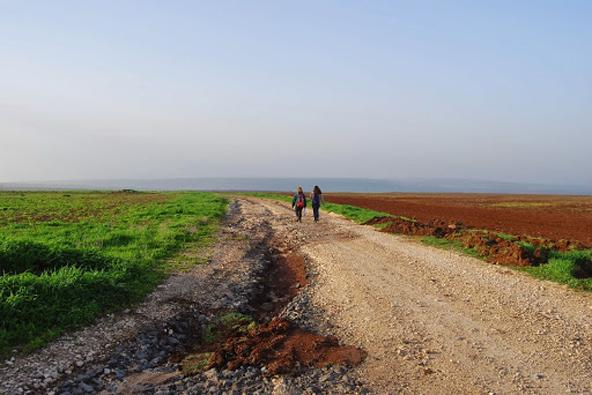 שביל עמק המעיינות: מרמת סירין למנחמיה