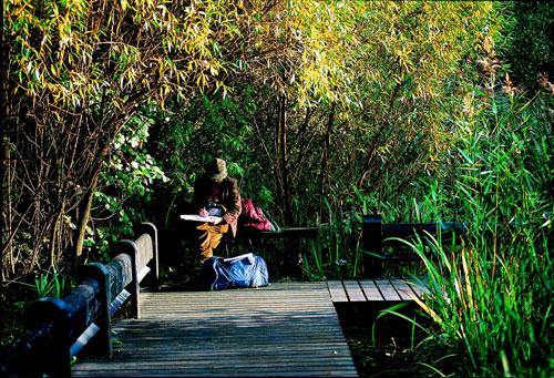 הפארקים של לונדון: איים של שלווה