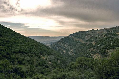 נחל כמון – טיול בין הר לעמק