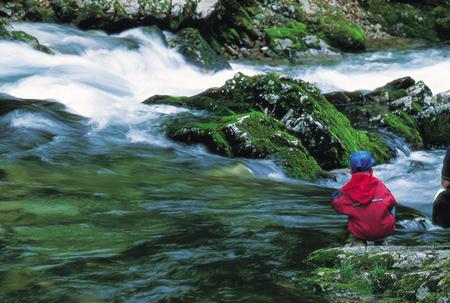 לטייל עם ילדים בסלובניה