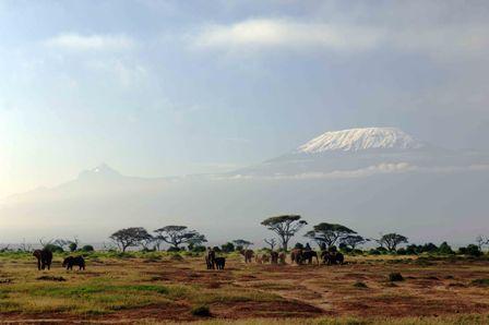 טנזניה: טרקים בהרים