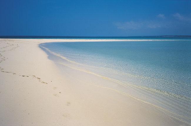שניים באי בודד