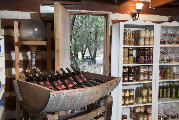 טיול יין בעמק יזרעאל ובגליל התחתון