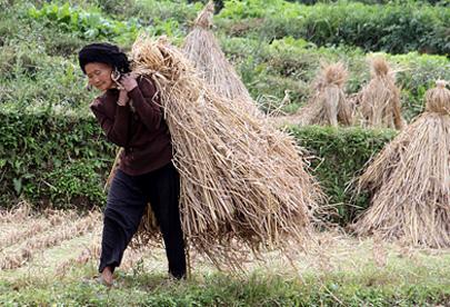 מחוז גויג'ואו – בחזרה לסין של פעם