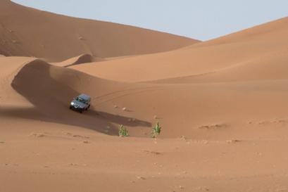 טיול במרוקו – פסיפס מסחרר של צבעים, טעמים ונופים