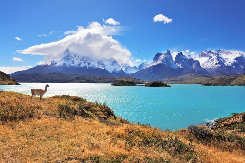 חלום דרום אמריקאי