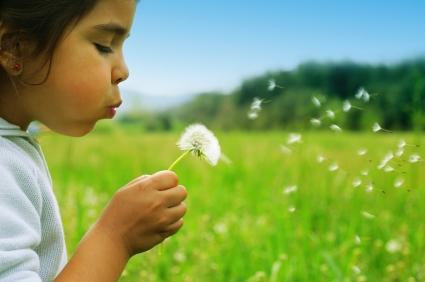 אקופסיכולוגיה: תנו כבוד לטבע
