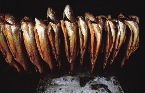 סקנדינביה – אוכלים דגים