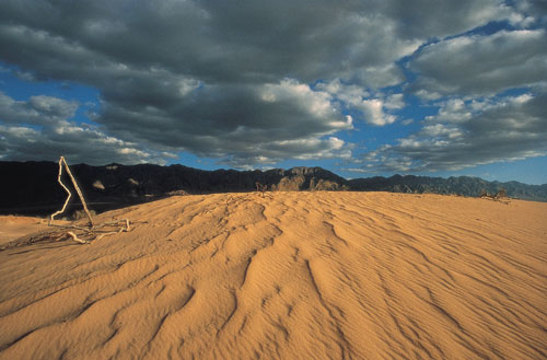 חולות סמר: ציור בחול