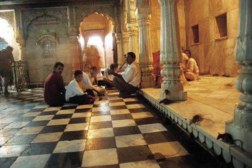 חולדות קדושות במקדש האלה קארני מאטה
