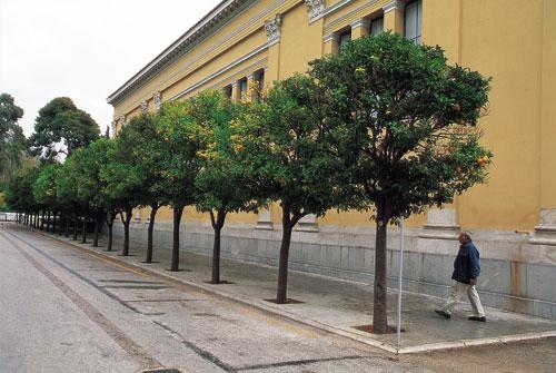 אתונה: כל הדרכים מובילות