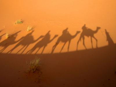 יום ולילה במדבר