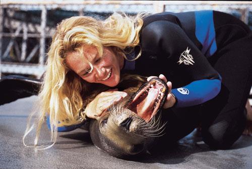 לוויתנים: פפראצי מתחת למים