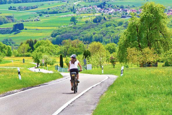 מסלולי אופניים ביער השחור