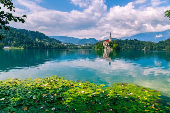 מלונות בסלובניה: המלצות