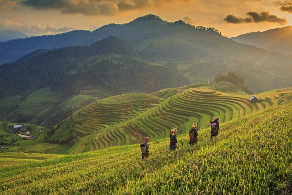 כתבת וידאו: וייטנאם האחרת