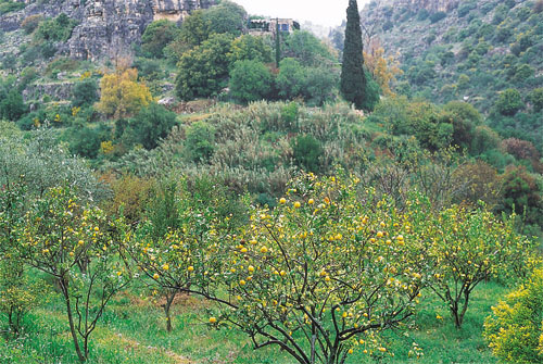 שביל ישראל: הר מירון – עמוד – ארבל (מסלול 3)