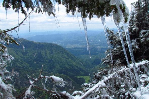 טבע בסלובניה: פסגות, מערות ודובים