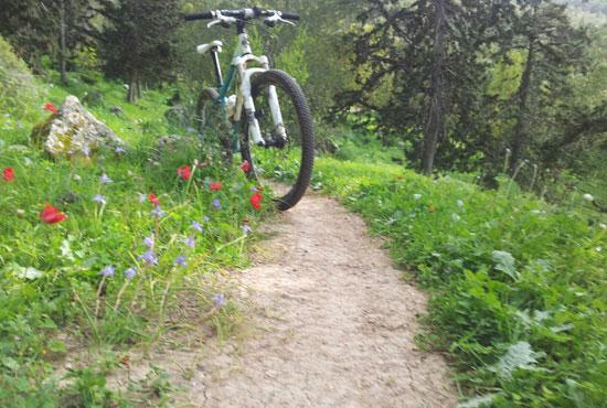 שביל האופניים הארוך בישראל נחנך בגלבוע