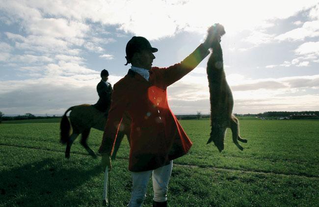 ציד: הם יורים גם בשועלים