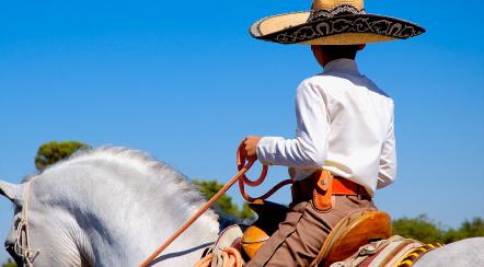 מקסיקו: מסע אל הזפאטיסטים