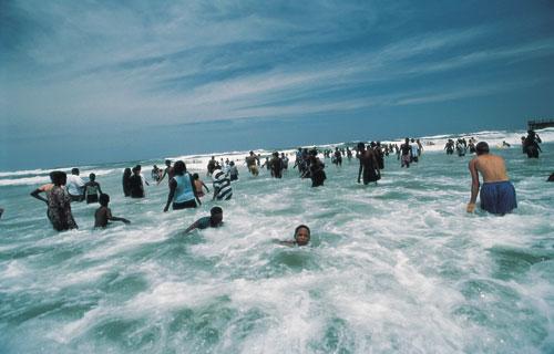 דרום אפריקה: מסנני הכרישים בנטאל