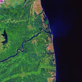 מפת יערות מנגרוב בקולדורה, הודו