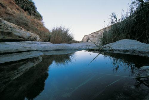 שבילים בישראל – המדינה המסומנת בעולם