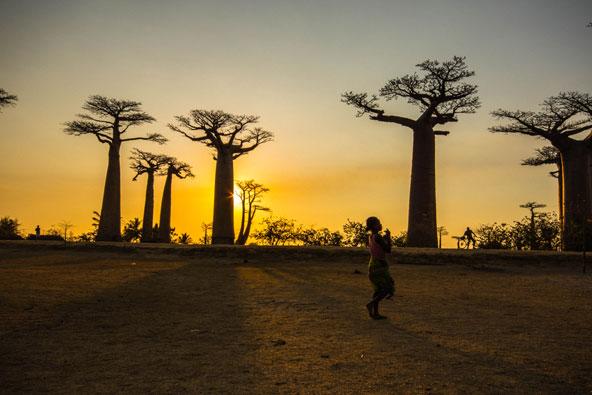 טיול במדגסקר – למורים, באובבים וחיוכים