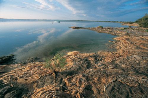 שמורת קמארג: שיר הלל לטבע