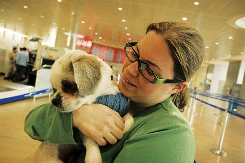 ביקור חודשי בנמל התעופה: כלבים לא נובחים בירוק