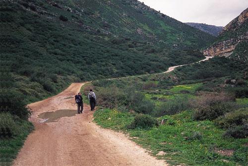 שביל ישראל: נבי יושע – דישון – הר מירון (מסלול 2)
