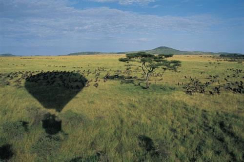 מסע בכדור פורח באפריקה, בעקבות ז'ול ורן