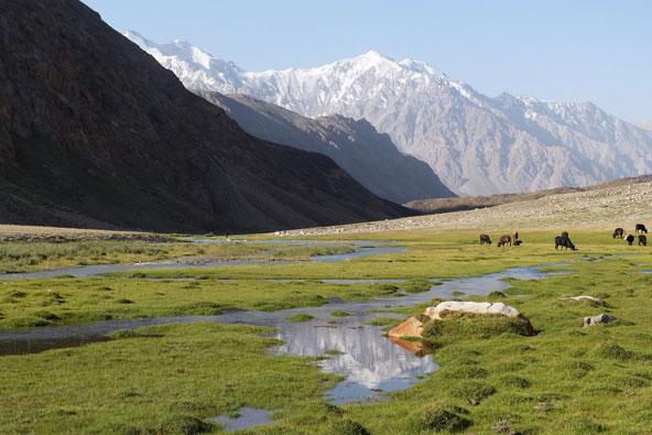 טרק בטג'יקיסטן – בין הרים לאגמים