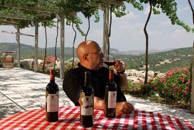 יין בשפלת יהודה והרי ירושלים