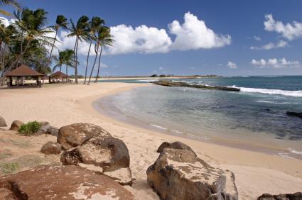 הוואי – חלום, אבל לא דמיוני