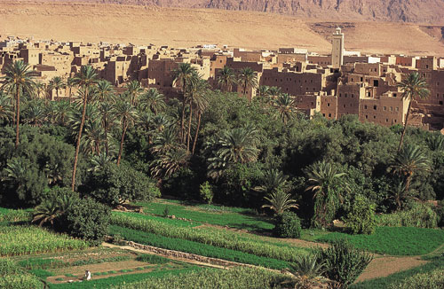 מרוקו עם שלמה בר: פתחתי חלון והתחלתי לרעוד