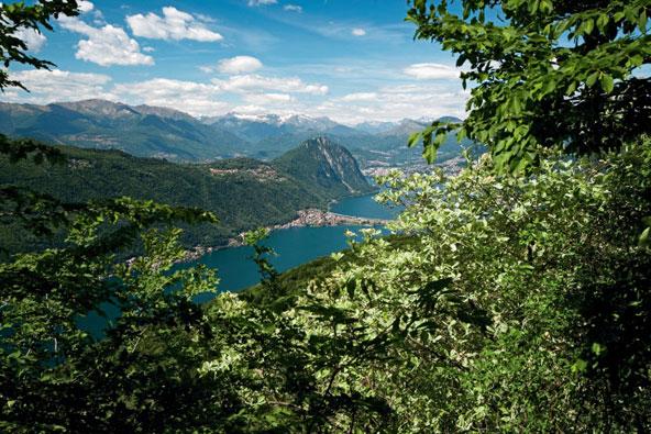 טיצ'ינו – כשאיטליה פוגשת את שווייץ