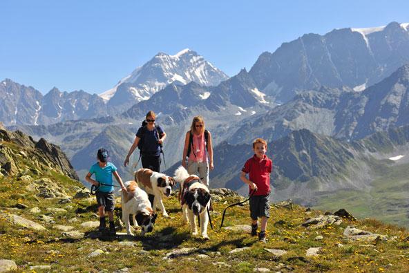 חופשות לא שגרתיות למשפחות הרפתקניות