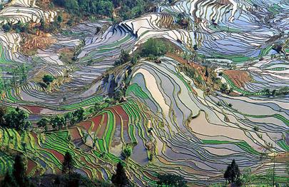 דרום סין – ארץ אלף הטרסות