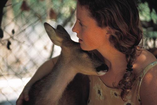 חי בר כרמל: רועת האיילים