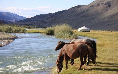 ארץ השמים הכחולים: טיול במונגוליה