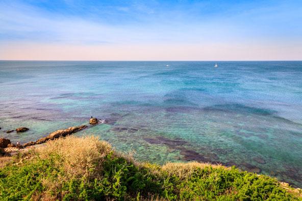 לאורך החוף – המקומות הכי שווים