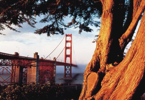סן פרנסיסקו: שער הזהב